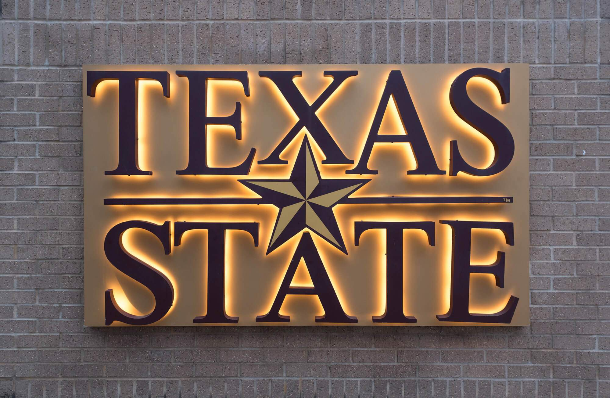Texas State Glowing sign