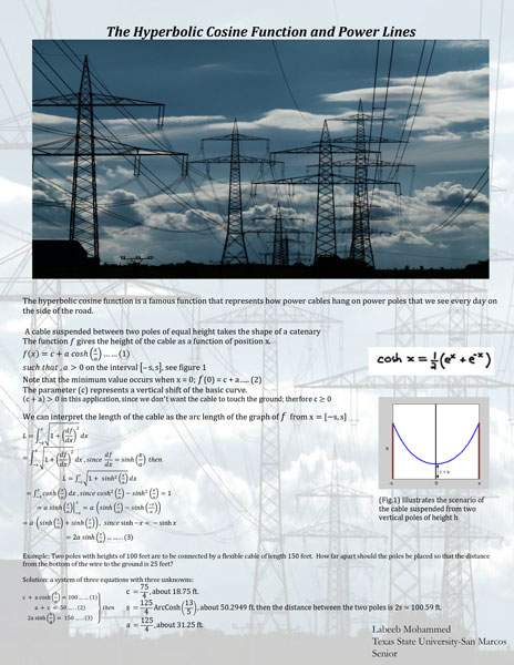 Math in the Picture 2012 Competition Winners : Mathematics