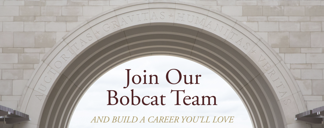 join our bobcat team and build a career you'll love