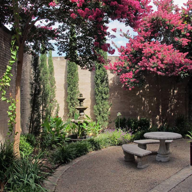 Ag Courtyard w flowering trees